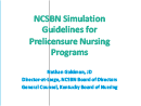 Watch Simulation Guidelines Forum Video