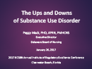 Watch The Ups and Downs of Substance Use Disorder Video