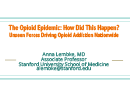 Watch How Did This Happen? Unseen Forces Driving Opioid Addiction Video