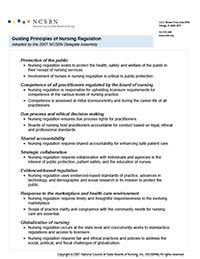 Guiding Principles of Nursing Regulation