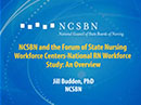 Watch NCSBN and the Forum of State Nursing Workforce Centers-National RN Workforce Study: An Overview Video